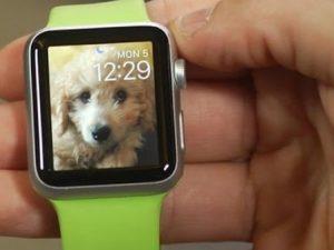b2ap3_medium_Apple-Watch-ail
